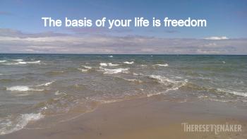 Basis freedom 2
