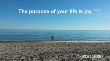 Purpose joy