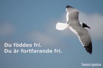 Fri fågel