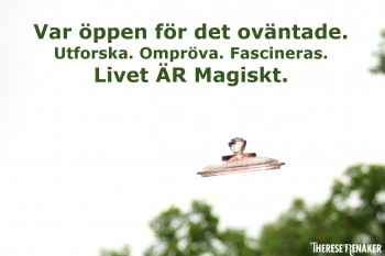 Livet är magiskt