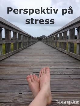 Perspektiv stress