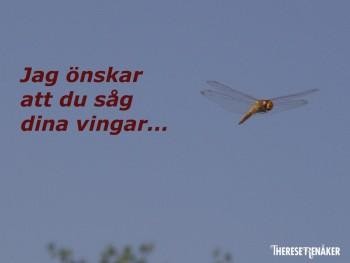 Dina vingar