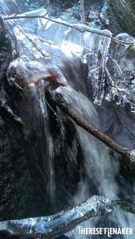 Flödet